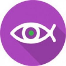 Професійне ПЗ TRASSIR Dewarp для розбиття зображення FishEye відеокамери